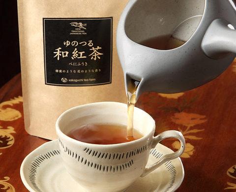 16日限定で【和紅茶】の試飲会を開催いたします!