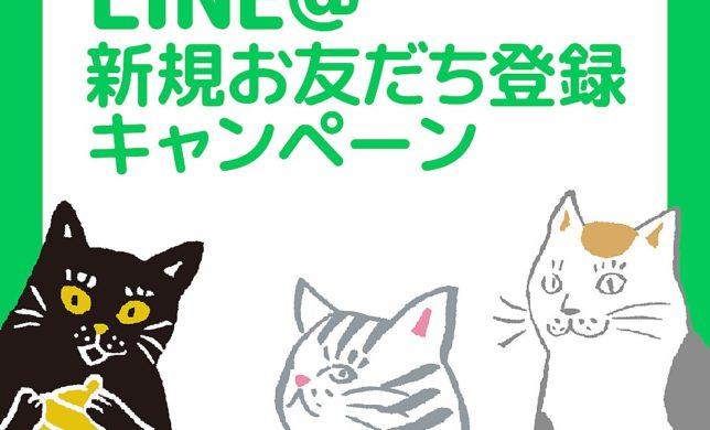 LINE新規お友達登録キャンペーン開催中!