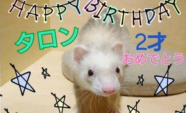 お誕生日おめでとう🎂🎊🎉