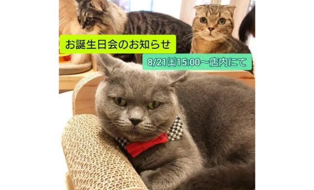 8/21㈯15時~お誕生日会のお知らせ💁🎂